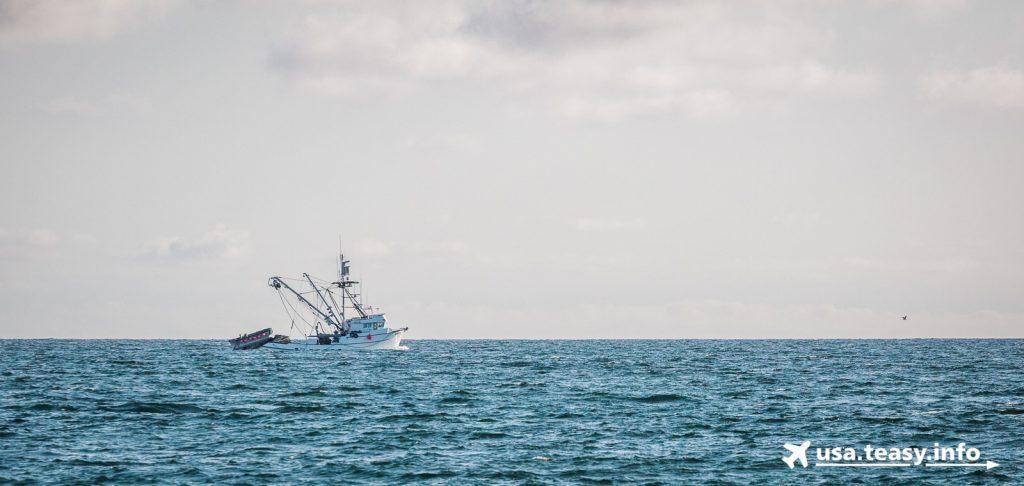 Ein Kutter auf dem Weg zum Fischfang.