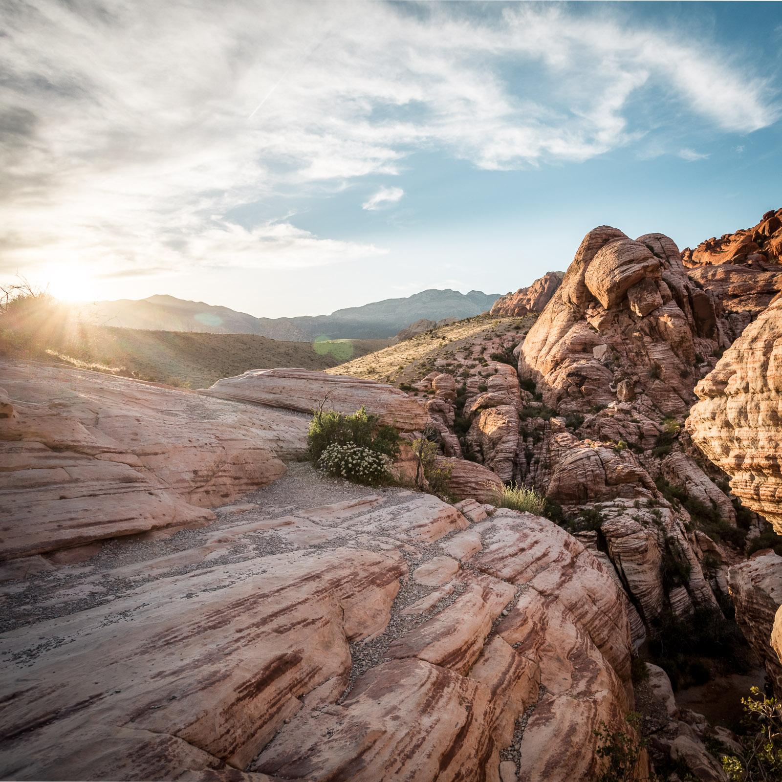 Red Rock und der Scenic Drive